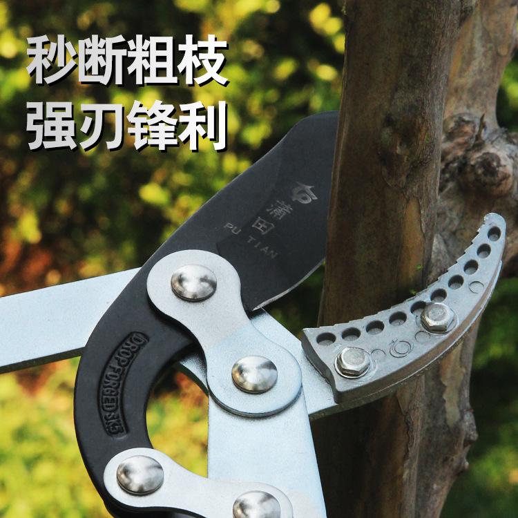 台湾蒲田大力剪伸缩粗枝剪园林剪刀省力树枝剪大力士高枝剪果树剪