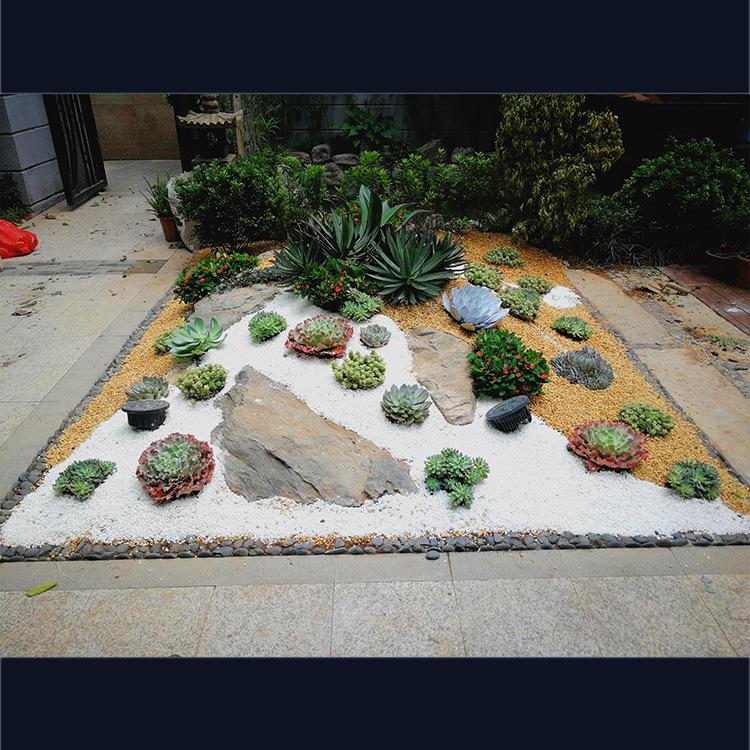 庭院植物设计工程深圳玫瑰园别墅庭院实例(此为定金详情请咨询)