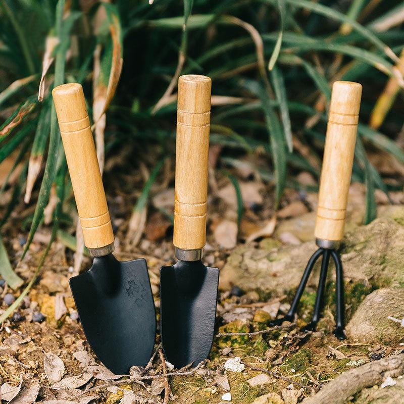 园林小三件套园艺铲 园艺工具三件套 多肉植物套装种花盆栽工具