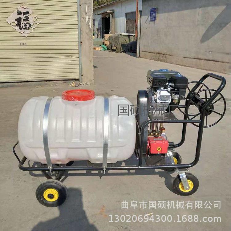 杀虫除草打药喷洒机 汽油动力果园果树杀虫机 手推式消毒喷洒机