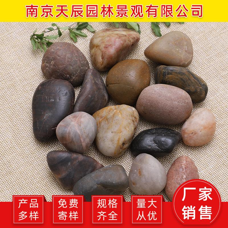 天然雨花石鹅卵石鱼缸造景原石小白石子五彩石鹅软石卵石彩色石头
