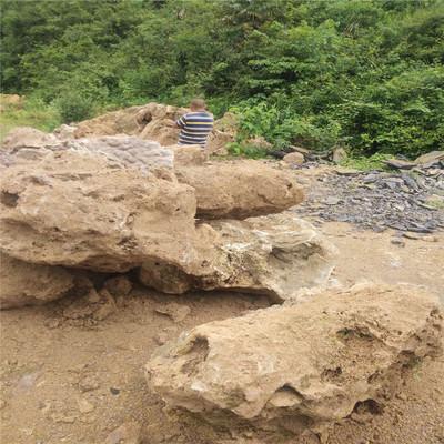 园林假山设计施工安装 上水石吸水石 园林草坪别墅设计施工枯山水