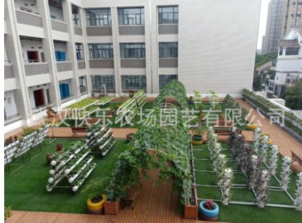 中小学校植物生态园设计、建造、养护、培训 蔬菜园 植物课堂