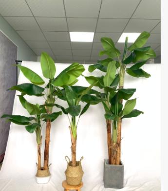仿真双杆芭蕉树盆栽 室内装饰大型香蕉树绿植盆景家居植物摆件