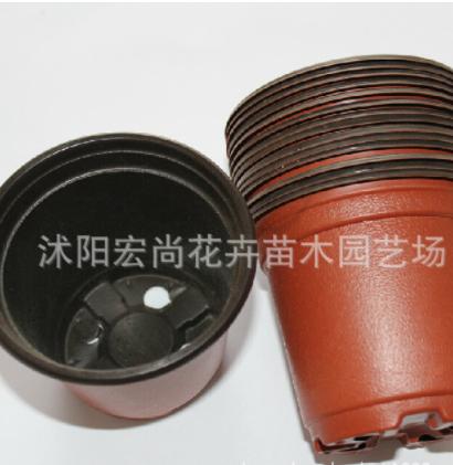 厂家直销 双色花盆 pp塑料 容器 多肉育苗盆苗圃商家专用 营养杯