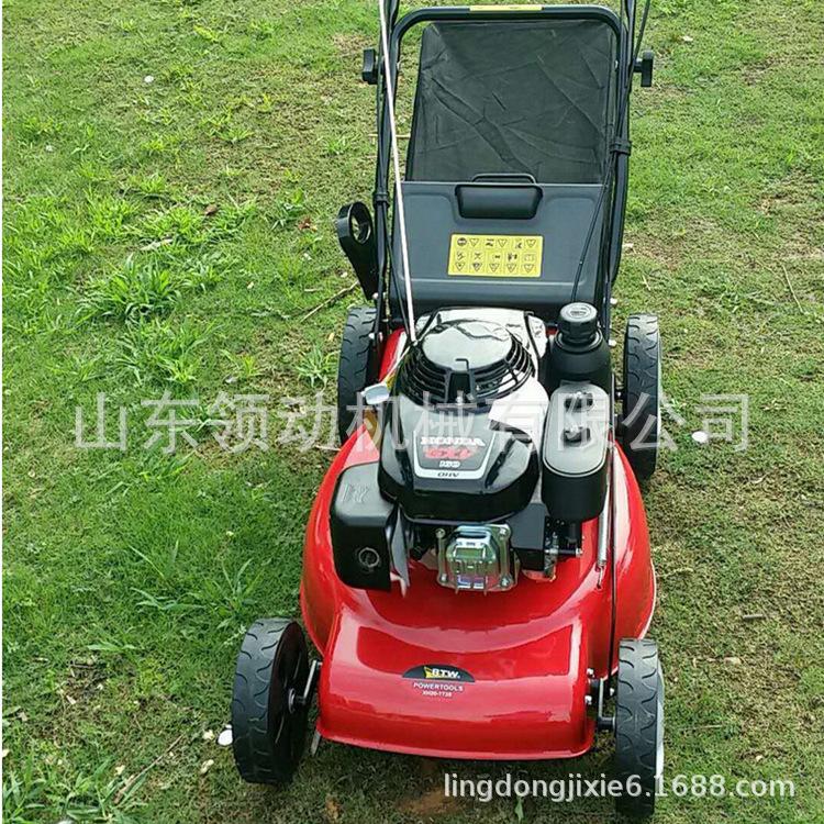 现货园林植保机械四冲程汽油发动机草坪修剪机手扶自走式草坪车