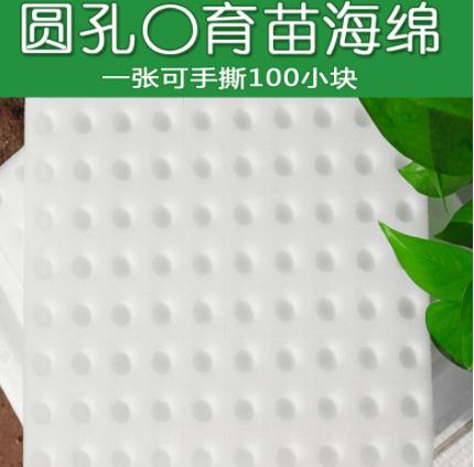 水培圆孔白色一百方块育苗定植海棉无土栽培设备蔬菜大棚种植海绵