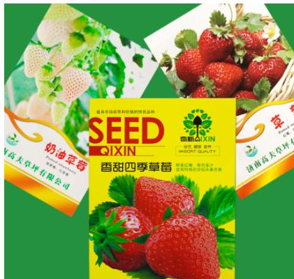 四季盆栽阳台种菜庭院无土栽培蔬菜种子菜籽红草莓苗奶油草莓种子