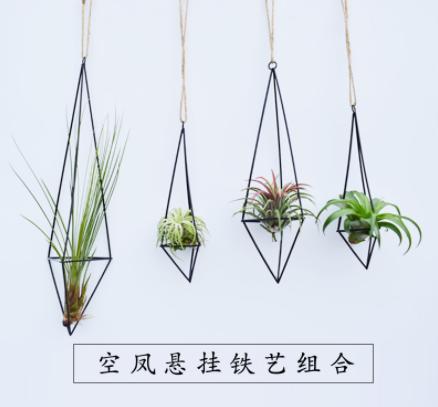厂家直销空气凤梨悬挂铁艺花架装饰家居不含植物